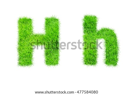 collection of green grass,eco font isolated on white background.h
