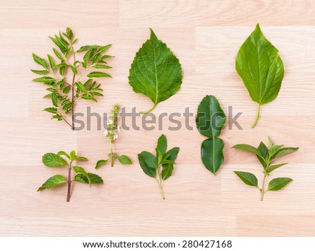 Collection of green hot and spicy of thai food ingredients (wooden background) - stock photo