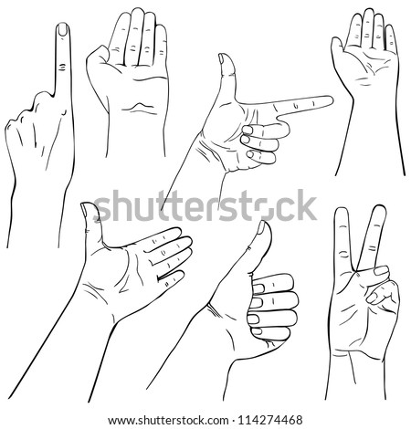 Collection of hands on different positions, outline illustration - stock photo