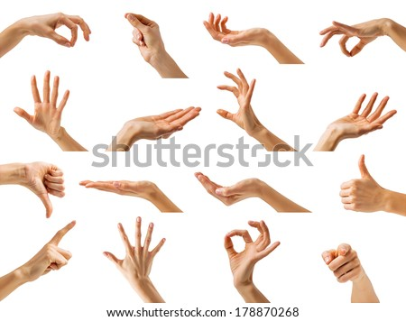 Collection of isolated woman's hands showing different gestures - stock photo