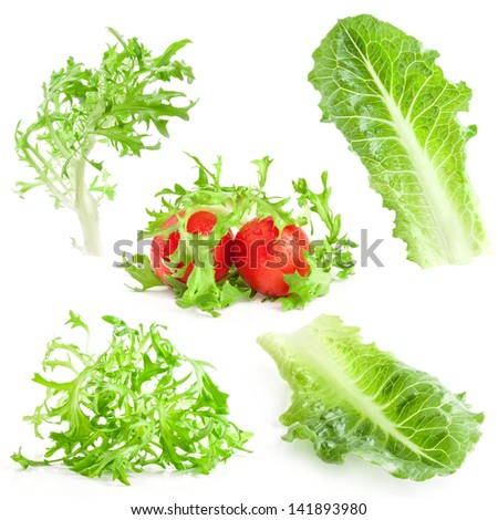 Collection of Lettuce and tomatoes isolated on white background