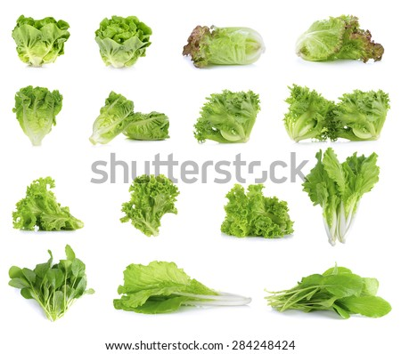Collection of Lettuce isolated on white background. - stock photo