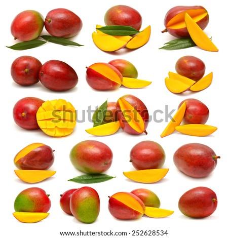 Collection of mango isolated on white background - stock photo