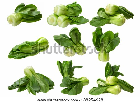 collection of many baby bokchoi isolated on the white background