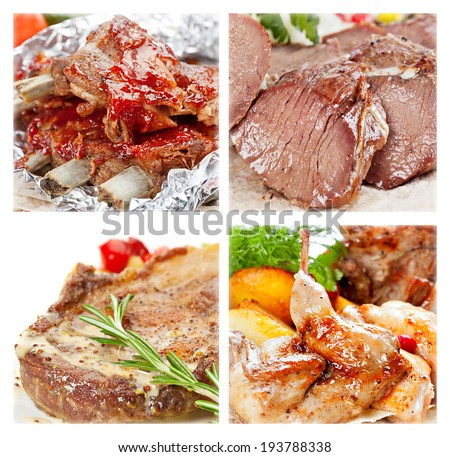 Collection of meat dishes from beef, pork, lamb and chicken - stock photo