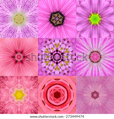 Collection of Nine Pink  Concentric Flower Mandalas. Kaleidoscope Concentric design. Full Flower Background - stock photo