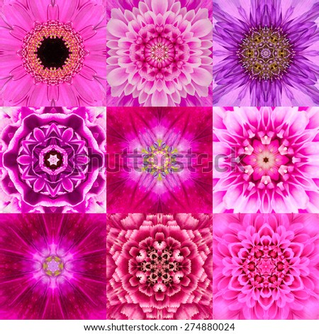 Collection of Nine Purple Concentric Flower Mandalas. Kaleidoscope Concentric design. Full Flower Background