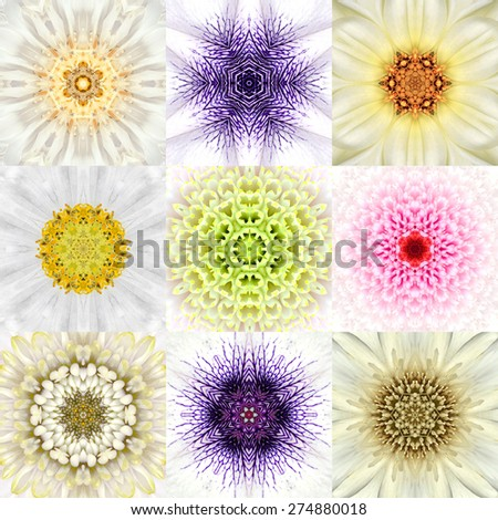 Collection of Nine White Concentric Flower Mandalas. Kaleidoscope Concentric design. Full Flower Background - stock photo