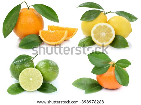 Collection of oranges mandarin lemon organic fruits isolated on a white background
