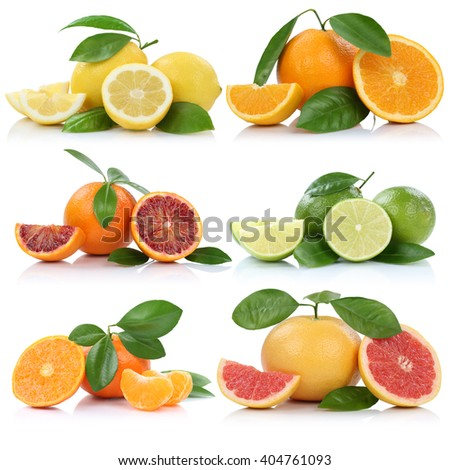Collection of oranges mandarins lemons grapefruit fruits isolated on a white background