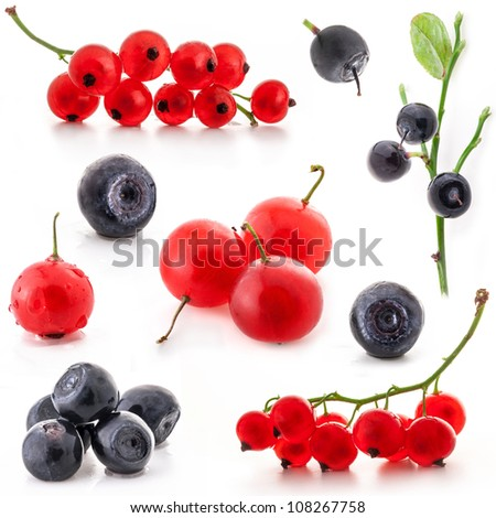 Collection of red currant and bilberry isolated on white background - stock photo