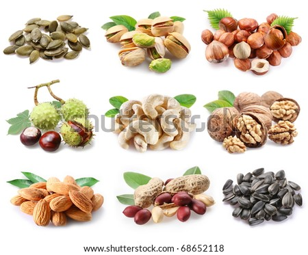 Collection of ripe nuts and seeds on a white background - stock photo