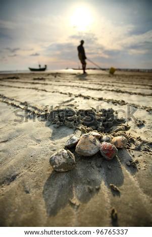 Collection of shellfish farming career - stock photo