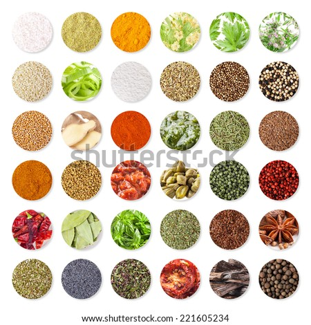 Collection of spices and herbs isolated on white background (clipping path) - stock photo