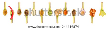 Collection of spices on a spoon on a white background - stock photo