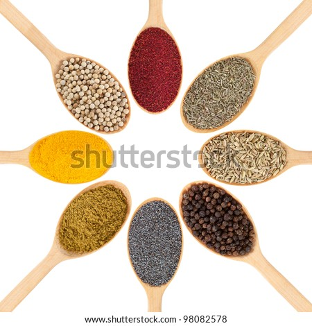 Collection of 8 spices on a wooden spoon. isolated on a white background - stock photo