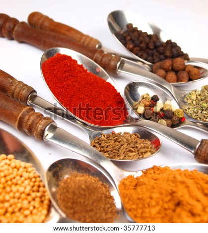 Collection of spices on wooden spoons isolated on white