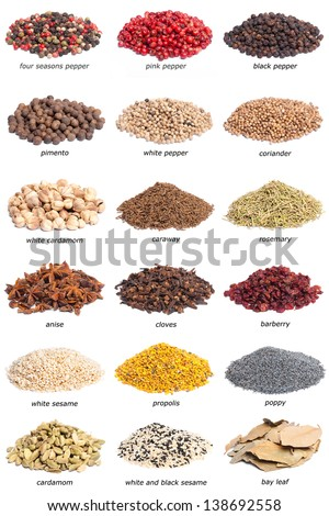 Collection of spices with names. Isolated on white background. - stock photo
