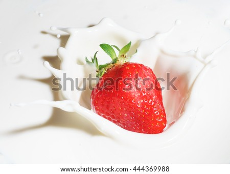 Collection of strawberries splashing into milk isolated on white background - stock photo