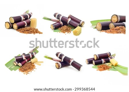 Collection of Sugar cane isolated on white background - stock photo