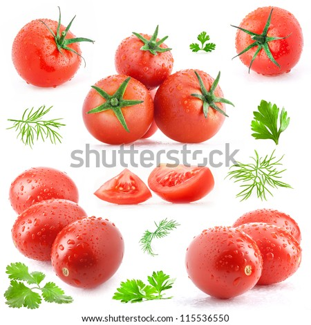Collection of tomatoes and green leaves with water drops, isolated on white background - stock photo