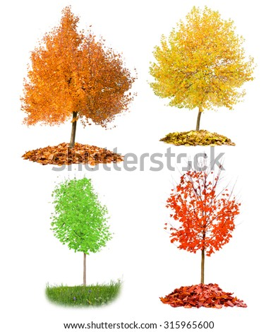 Collection of trees with red, yellow and green leaves isolated on white