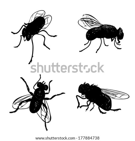 Collection of various positioned doodle flies - stock photo