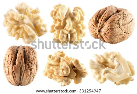 collection of walnuts isolated on the white background
