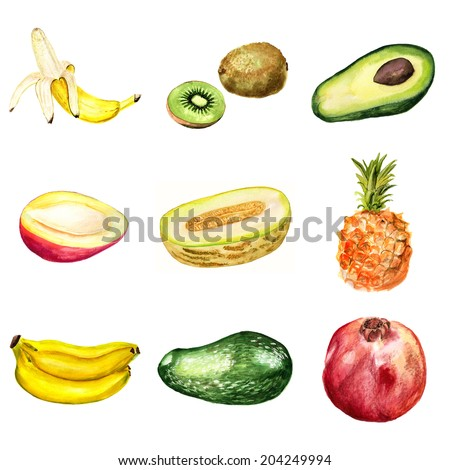 Collection of watercolor images of tropical fruits on white background - stock photo