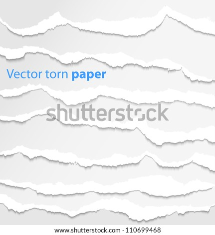 Collection of white torn paper. Vector illustration - stock photo