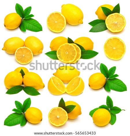 Collection of whole and sliced lemons with leaves isolated on white background. Tropical fruit. Flat lay, top view