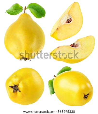 Collection of  whole and sliced quince fruits isolated on white background with clipping path - stock photo