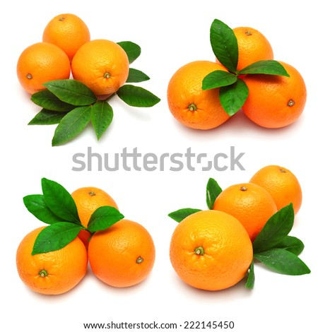 Collection oranges with leaves isolated on white background - stock photo