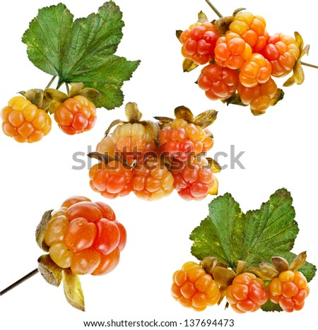 cloudberries stock images royalty free images vectors shutterstock. Black Bedroom Furniture Sets. Home Design Ideas