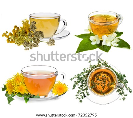 Collection set of cup of herbal tea and fresh herb isolated on white background - stock photo