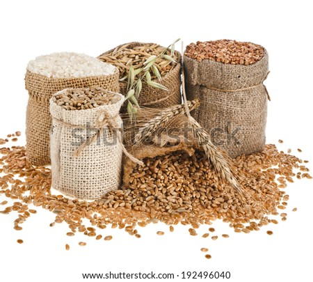 Collection set of seed meal and grains in bags isolated on a white background - stock photo