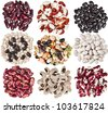 Collection set of Various dried kidney legumes haricot beans close up isolated on white background - stock photo