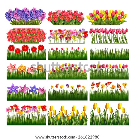 Collection Tulips - stock photo