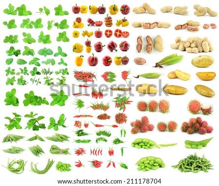 collection vegetables on white background