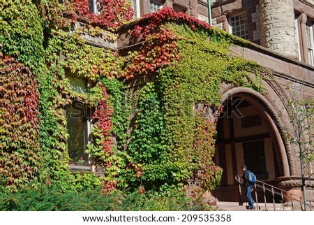 college building with colorful fall ivy - stock photo