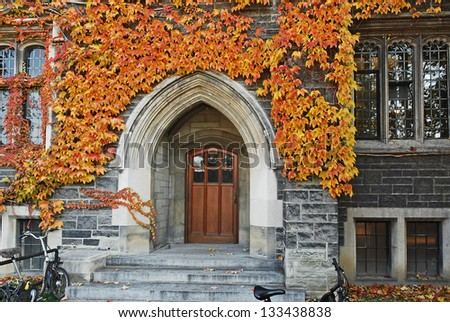 College door with fall ivy - stock photo
