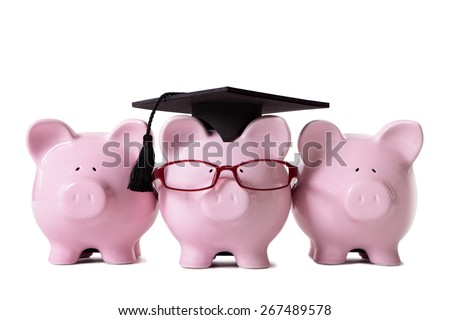 College graduate, piggy bank, front view - stock photo