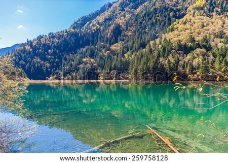 Coloeful view of pond and forest in Jiuzhaigou national park, Sichuan Province, China - stock photo