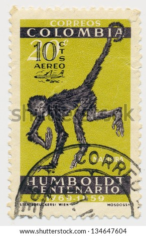 COLOMBIA - CIRCA 1960: A stamp printed in Colombia, shows white-fronted spider monkey (Ateles belzebuth), circa 1960 - stock photo