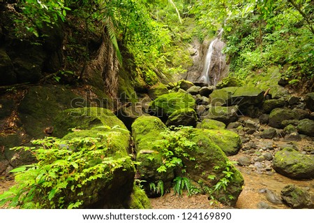 Colombia, wild Darien jungle of the Caribbean sea near Capurgana resort and Panama border. Central America. Waterfall into the jungle - stock photo