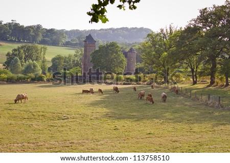 Colombier Castle in Aubrac, France - stock photo
