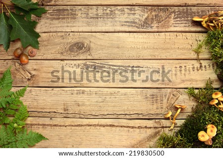 Color autumn background with leafs and moss on wooden board - stock photo