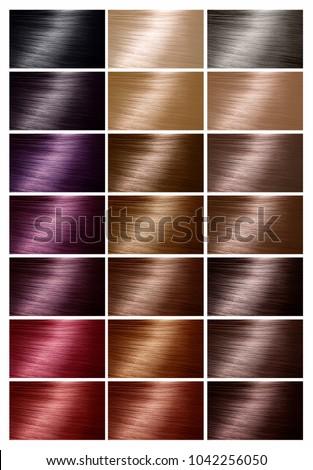 Color Chart Tints Hair Color Palette Stock Photo 1042256050 ...