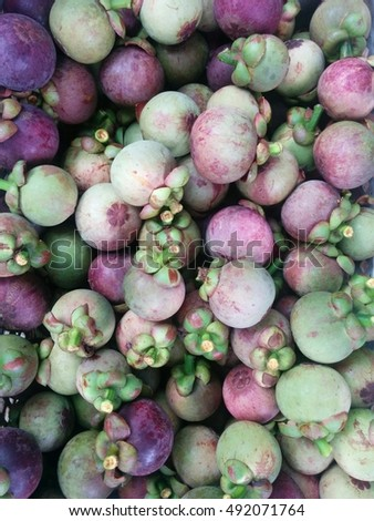 color full mangosteen