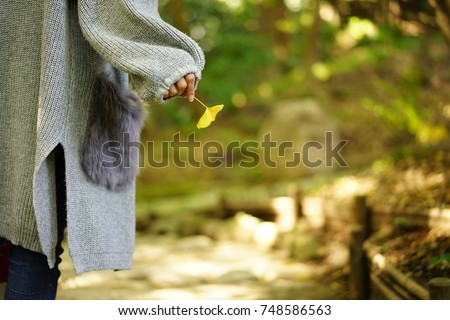 https://thumb1.shutterstock.com/display_pic_with_logo/167494286/748586563/stock-photo-color-leaves-in-autumn-748586563.jpg